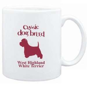 Dog Breed West Highland White Terrier  Dogs