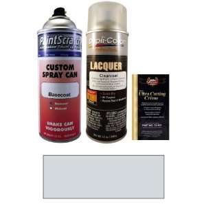12.5 Oz. Silver Stone Metallic Spray Can Paint Kit for