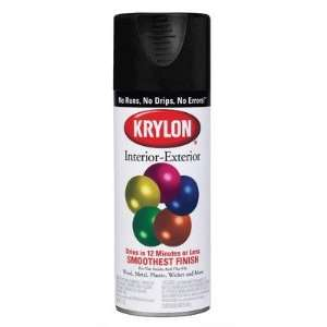 Flat Black Interior & Exterior Decorator Spray Paint 5160