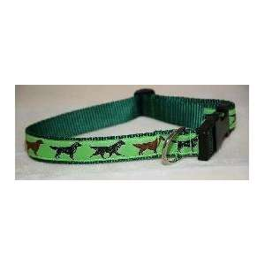 Designer Flat coated Retriever Dog Collar   Blue Flat coated