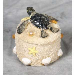 Baby Sea Turtle Trinket Box Sand and Shell Base